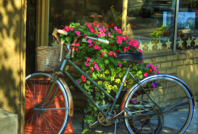 slow-life-bike.jpg (264.36 Kb)
